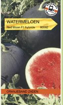 Oranjeband - Watermeloen Red Star F1 (Citrullus lanatus)