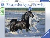 Ravensburger puzzel Paarden op het strand 1500 stukjes
