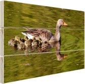 Ganzen in het water Hout 160x120 cm - Foto print op Hout (Wanddecoratie) XXL / Groot formaat!