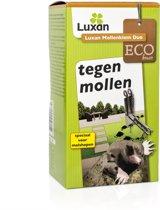 Luxan Mollenklem Duo