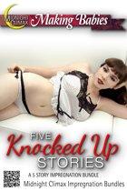 Five Knocked Up Stories (A 5 Story Impregnation Bundle)
