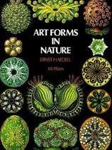 Boekomslag van 'Art Forms in Nature'