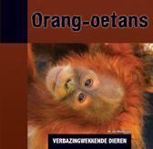 Verbazingwekkende dieren - Orang-oetans