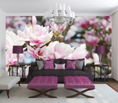 Magnolia Flowers Photo Wallcovering