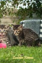 Summer Kittens