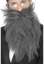 Lange grijze baard voor mannen - Verkleedattribuut