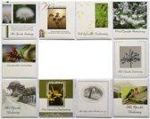 Rouwkaarten en Condoleance kaarten - Set van 10--L-032