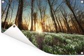 Zonnestralen op sneeuwklokjes Tuinposter 90x60 cm - Tuindoek / Buitencanvas / Schilderijen voor buiten (tuin decoratie)