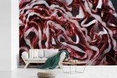 Fotobehang vinyl - Een dwarsdoorsnede van een roodlof breedte 600 cm x hoogte 400 cm - Foto print op behang (in 7 formaten beschikbaar)