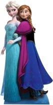 Groot decoratie bord Frozen Anna en Elsa