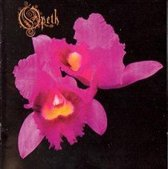 Orchid + 1