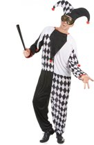 Narrenkostuum voor mannen - Volwassenen kostuums