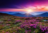 Papermoon Summer Mountains Vlies Fotobehang 300x223cm 6-Banen
