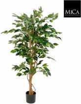 Mica flowers - ficus benjamina maat in cm: 150 x 85 groen in plastic pot