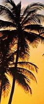 Fotobehang - Sunny Palms - Deurposter - 200 x 86 cm - Multi