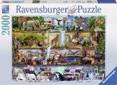 Ravensburger puzzel Aimee Stewart Wild Kingdom Shelves - Legpuzzel - 2000 stukjes