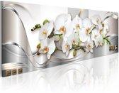 Canvas Schilderij - Orchidee , wit zilver look , 1 luik , 3 maten