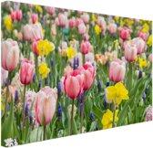 Tulp tuin Canvas 30x20 cm - klein - Foto print op Canvas schilderij (Wanddecoratie woonkamer / slaapkamer)