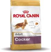 Royal Canin Cocker Adult - Hondenvoer - 3 kg
