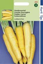 Hortitops Zaden - Wortelen Lobbericher,Gele