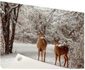 Herten in de sneeuw Tuinposter 200x100 cm - Foto op Tuinposter / Schilderijen voor buiten (tuin decoratie)