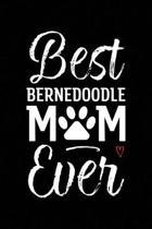 Best Bernedoodle Mom Ever