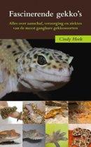 Fascinerende gekko's