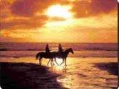 2 Paarden Zonsondergang Muismat