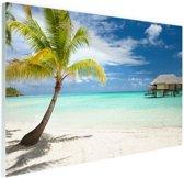 Palm en hutten op tropisch eiland Glas 120x80 cm - Foto print op Glas (Plexiglas wanddecoratie)