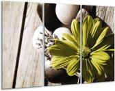 Glasschilderij Bloem | Bruin, Groen | 120x80cm 3Luik | Foto print op Glas |  F002527