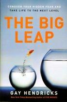 Boek cover The Big Leap van Gay Hendricks (Paperback)