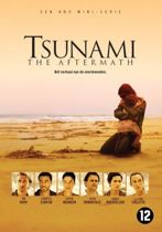 Tsunami - The Aftermath