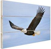 Adelaar tijdens vlucht foto Hout 80x60 cm - Foto print op Hout (Wanddecoratie)