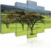 Schilderij Groen Afrika, groen, 5luik, 2 maten
