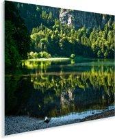 Uitzicht vanaf de kustlijn van de Feldsee in het Duitse Zwarte Woud Plexiglas 90x90 cm - Foto print op Glas (Plexiglas wanddecoratie)