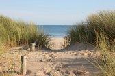 Tuinposter strand duinovergang