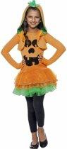 Halloween pompoen kostuum / verkleedpak voor meisjes 145-158 (10-12 jaar)