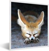 Foto in lijst - Een slapende Fennek op de grond fotolijst wit 40x50 cm - Poster in lijst (Wanddecoratie woonkamer / slaapkamer)