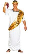 Caesar Kostuum | Julius Caesar Van Het Romeinse Rijk | Man | Maat 52-54 | Carnaval kostuum | Verkleedkleding