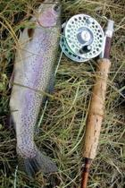 Caught a Rainbow Trout with a Fly Rod Fishing Journal