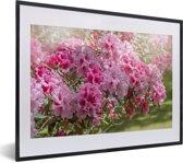 Foto in lijst - Zomerse kleuren van de hortensia fotolijst zwart met witte passe-partout klein 40x30 cm - Poster in lijst (Wanddecoratie woonkamer / slaapkamer)