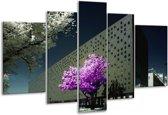 Glasschilderij Boom | Paars, Grijs, Wit | 170x100cm 5Luik | Foto print op Glas |  F002380