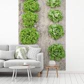 Fotobehang vinyl - Bindsla gestructureerd op een rijtje vanaf boven breedte 270 cm x hoogte 400 cm - Foto print op behang (in 7 formaten beschikbaar)