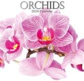 Kalender 2020 Orchids (30 x 30)