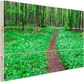 Weg door het groene bos Hout 80x60 cm - Foto print op Hout (Wanddecoratie)