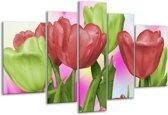 Glasschilderij Tulpen   Rood, Groen, Paars   170x100cm 5Luik   Foto print op Glas    F003205