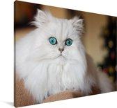 Sneeuwwitte Perzische kat Canvas 90x60 cm - Foto print op Canvas schilderij (Wanddecoratie woonkamer / slaapkamer) / Huisdieren Canvas Schilderijen