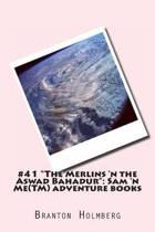 #41 the Merlins 'n the Aswad Bahadur
