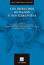 Los derechos humanos y sus garantías : Tomo II