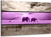 Canvas schilderij Olifant | Paars, Bruin | 140x90cm 1Luik